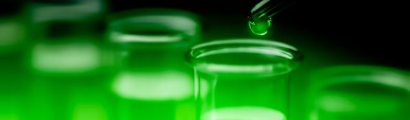 Zakiseljivači - Org. kiseline